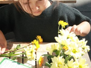 Cataleya-Flowers